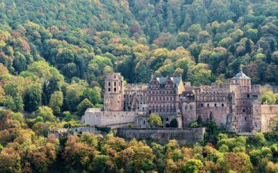 Bezaubernde Stadt Heidelberg und malerische Deutsche Weinstraße449,00 €
